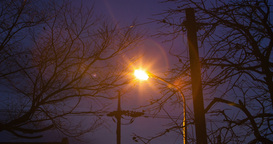 Countryside of streetlamp with branches of tree and electronic poles in time lap Footage