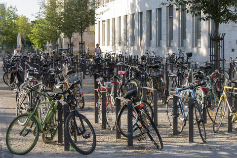 Bicycle parking in front of University フォト