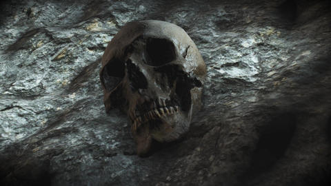 ancient human skull. Apocalypse concept. Super realistic 4k animation Animation