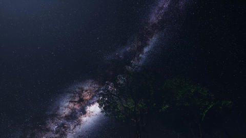 4K Astro of Milky Way Galaxy over Alpine Forest Footage