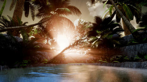 4K Floating down a river in a beautiful tropical forest Footage