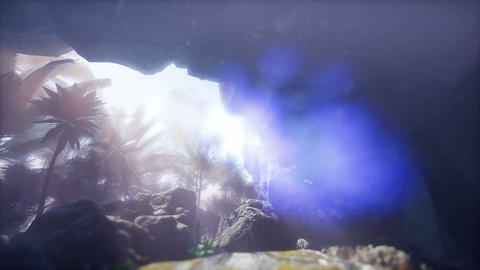4k Jungle and rocks inside cave scene sliding Footage