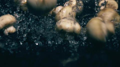 Whole champignon mushrooms splash on dark wet surface Footage