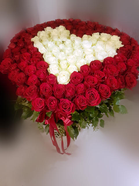 a large bouquet of red and white roses in the form of heart on light background Fotografía