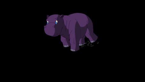 Little Violet Hippo Emerges from the Water Alpha Animation