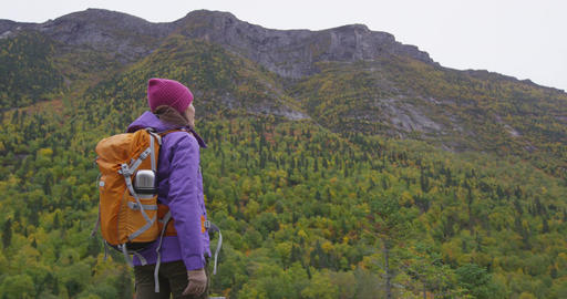 Hiking woman in Autumn forest on hike in fall mountain landscape looking at view Live Action