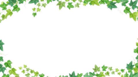 20170628 tsuta frame green aBG alpha PNG CG動画素材