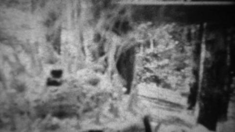 1939: Happy grandpa blowing out 72 candle birthday cake Footage