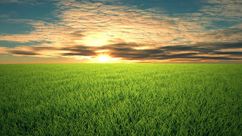 Flight over grass, sunset, cloudscape Footage