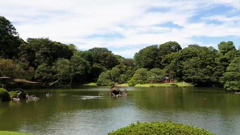 Japanese Garden Footage HD - ponds Vol 2 ビデオ