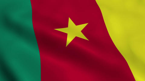 Realistic Cameroon flag Animation