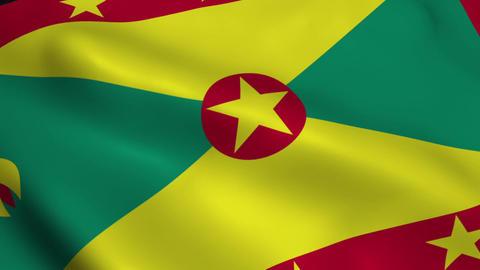 Realistic Grenada flag Animation