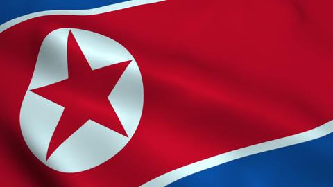 Realistic North Korea flag 애니메이션