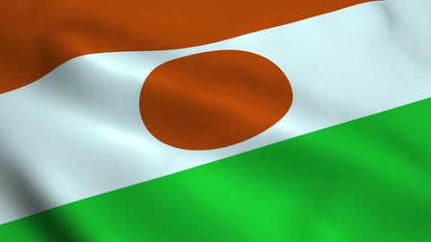 Realistic Niger flag Animation
