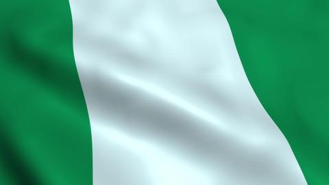 Realistic Nigerian flag Animation
