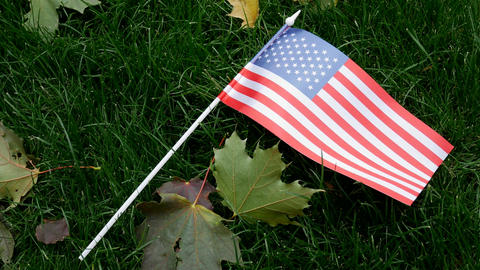 American USA Flag on Green Grass on Veterans Day Footage