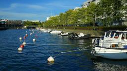 Many small motor boats moored along city embankment, green trees on shore Footage