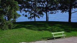 Bench and fine green lawn at small park near lake, trees on shore Footage