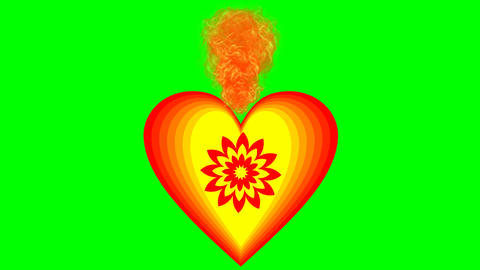 Burning heart on green screen. Animation of love symbol in cheerful vivid colors Bild