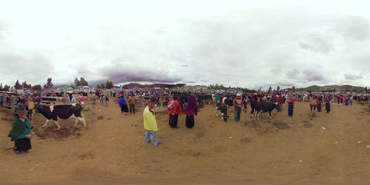 360Vr Indigenous Farmers Trading Cattles At A Saturday Animal Market In Riobamba Footage