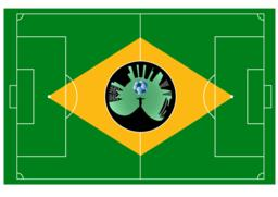 Brazilian football field Vector