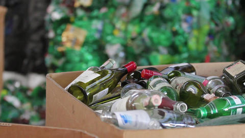 Pet bottle ready for recycling Live Action