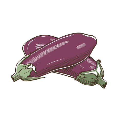 Eggplants in vintage style フォト