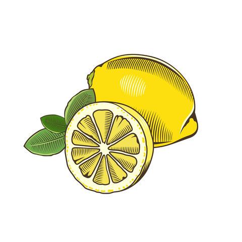 Lemon in vintage style Fotografía