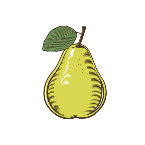 Pear in vintage style Foto