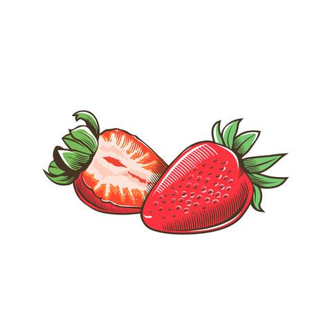 Strawberry in vintage style フォト