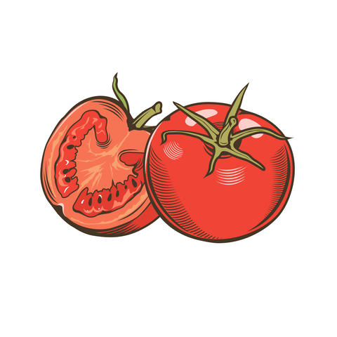 Tomatoes in vintage style Foto