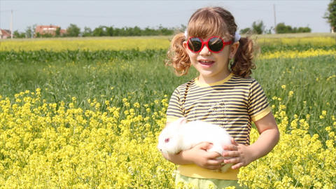 little girl with white dwarf bunny Footage