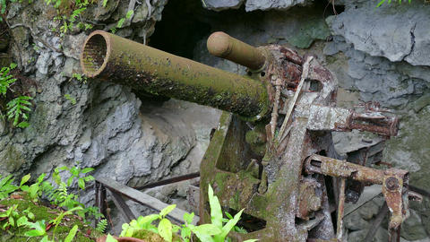 Old Gun Cannon Artillery In Jungle Japanese Defense Position Palau stock footage