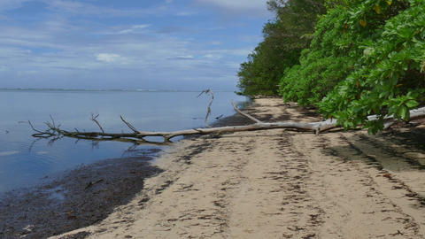 Orange Beach Landing Sea Battle Of Peleliu Palau World War Footage