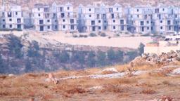 Israeli Building stock footage