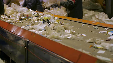 Workers at conveyor sorting garbage Live Action