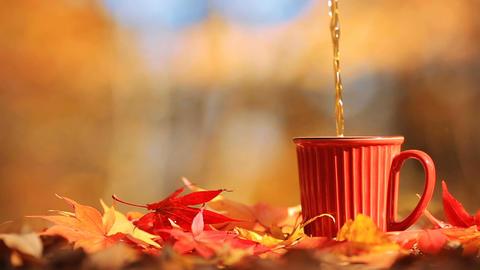 Tea mug and autumn multi colored foliage Image
