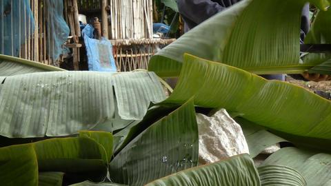 4K Woman hands using knife slide cutting banana leaf Image