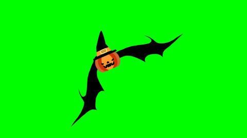 Flying pumpkin Stock Video Footage