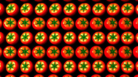 Tomatoes On Black Background CG動画素材