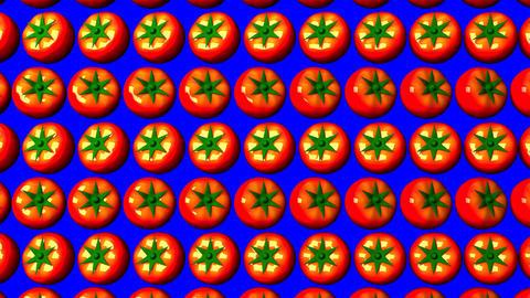 Tomatoes On Blue Chroma Key Animation