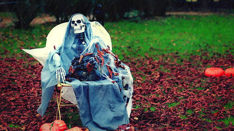 Skeleton in the Park Bild