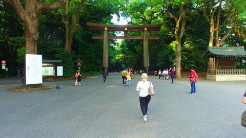 Torii gate of Meiji jingu shrine in Harajyuku Tokyo Japan Footage