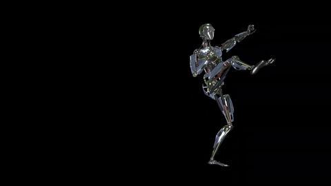 Iron Man Fighter - II - LS -Transparent Bild