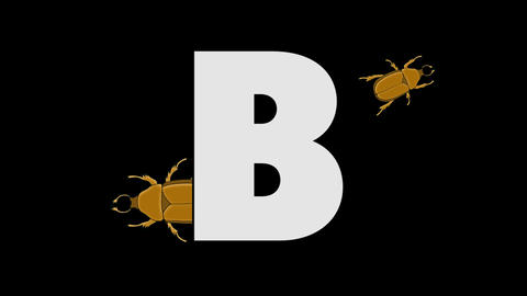 Letter B and Beetle (background) Animation
