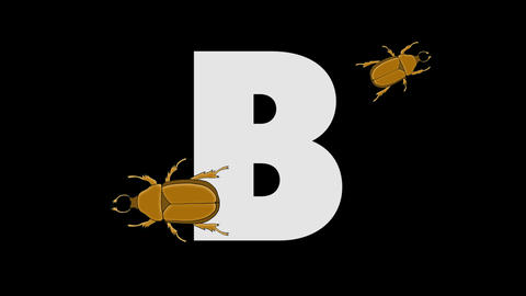 Letter B and Beetle (foreground) Animation