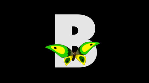Letter B and Butterfly (foreground) Animation