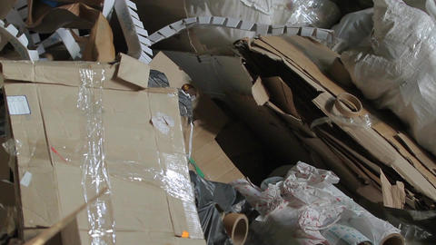 Big Factory For Recycling Paper and Carboard Footage
