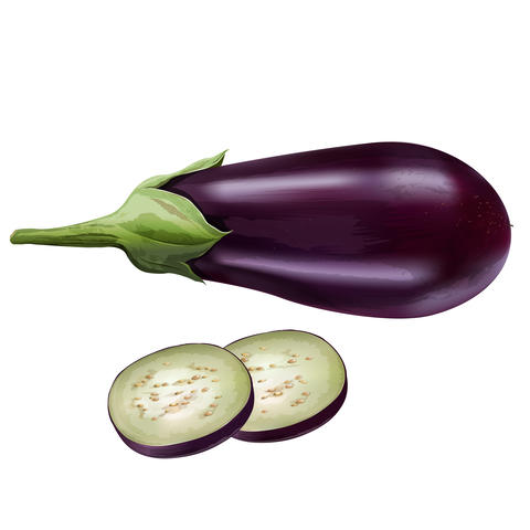 Eggplant on white background フォト