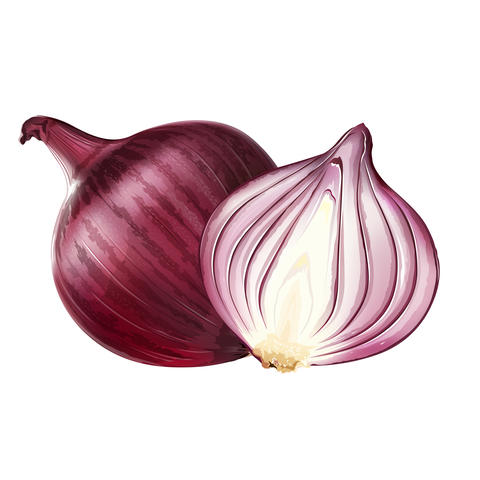 Red onion on white background フォト